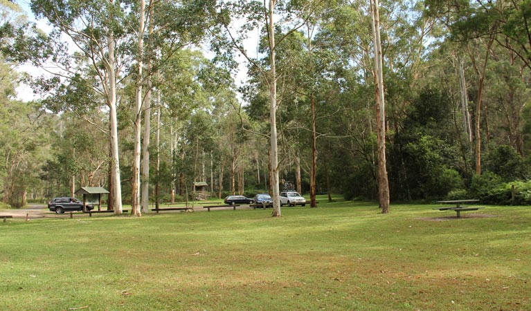 Mill Creek picnic area - QLD Tourism