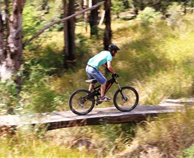 The Steps Mountain Bike Park - QLD Tourism