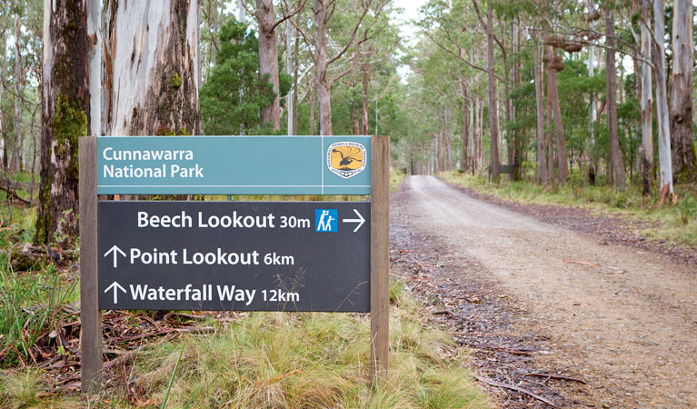 Beech lookout - QLD Tourism