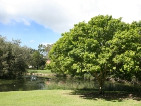 Hervey Bay Botanic Gardens - QLD Tourism