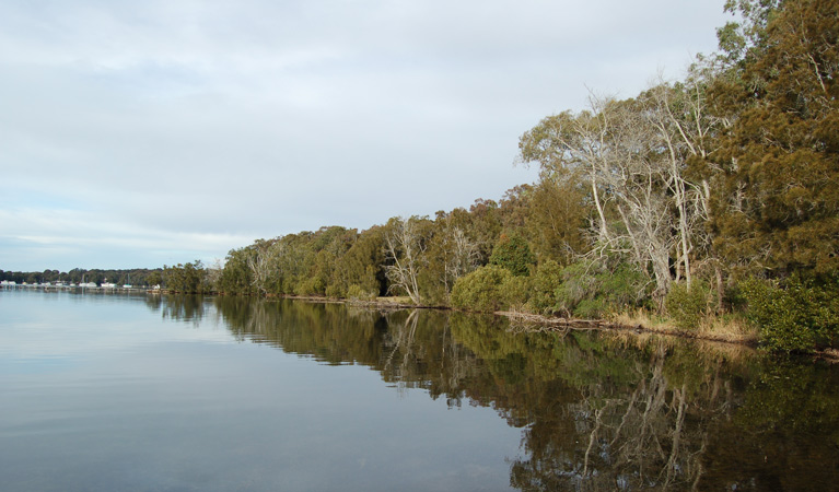 Lake Macquarie State Conservation Area - QLD Tourism