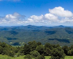 Griffith Lookout - QLD Tourism