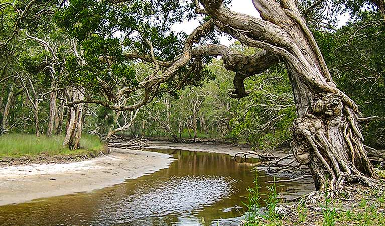 Saltwater National Park