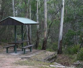 White Rock River picnic area - QLD Tourism