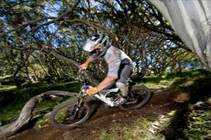 All Terrain Cycles - QLD Tourism