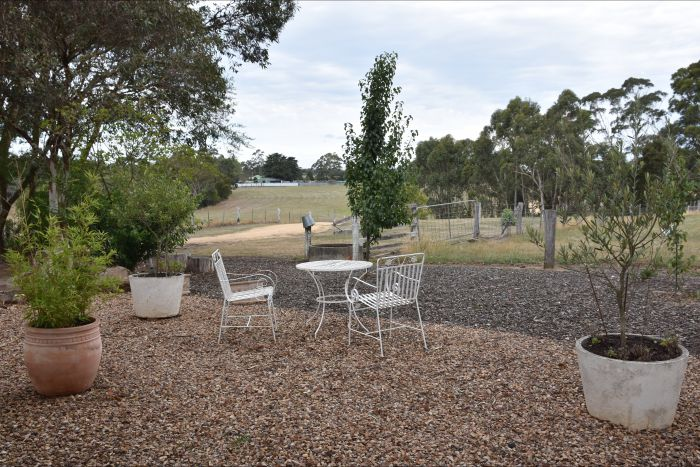 Cygnet Park Country Retreat - QLD Tourism