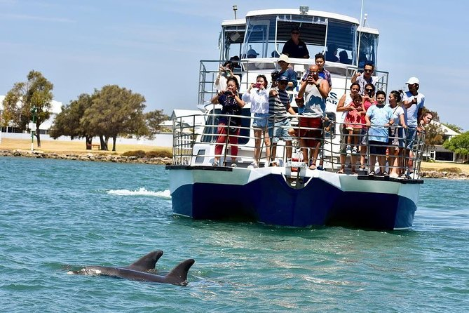 Mandurah Dolphin and Scenic Canal Cruise - QLD Tourism