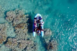 Glass-bottom boat tour with Whitehaven Beach - QLD Tourism
