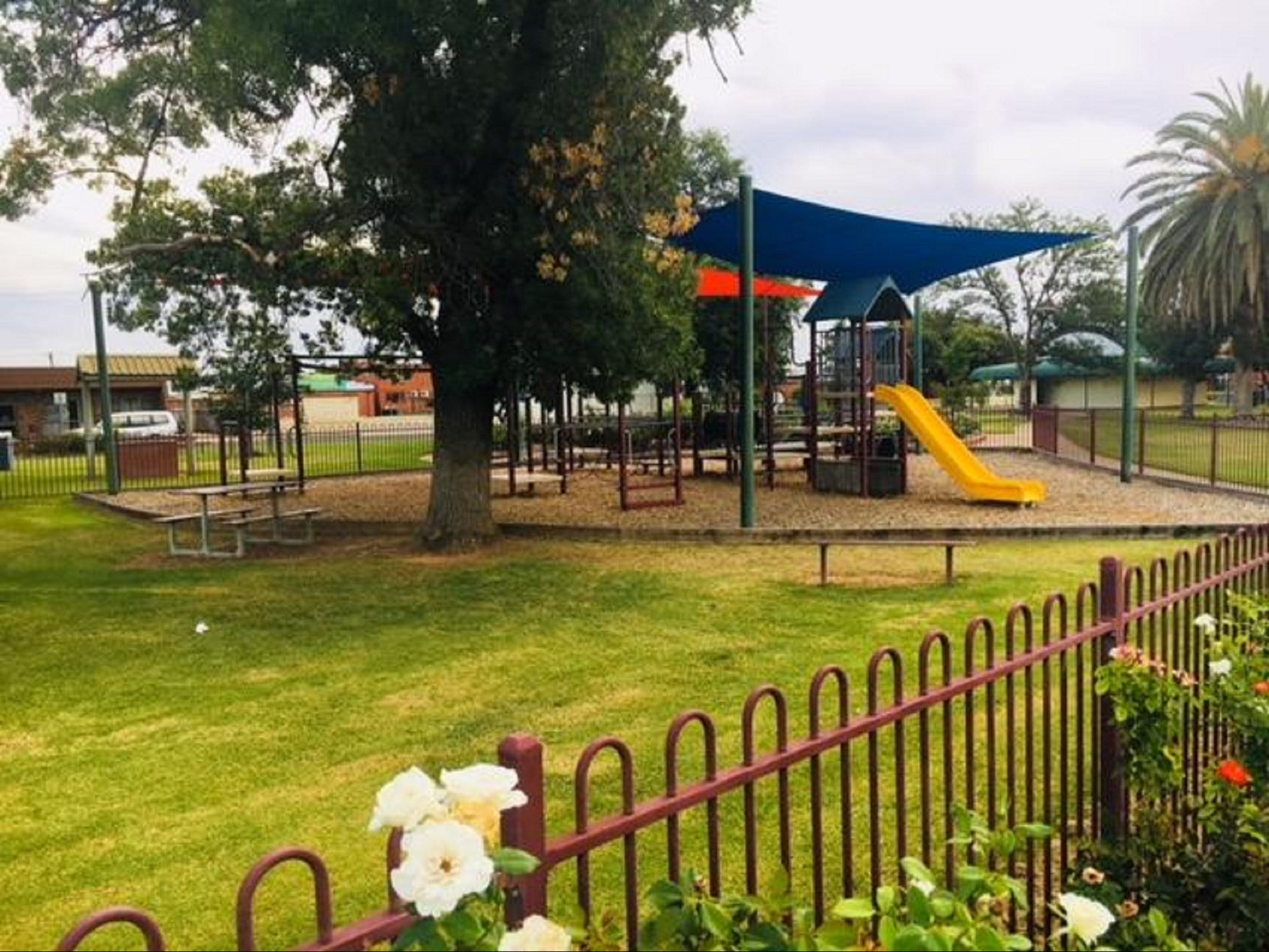 Cobram Mivo Park and Playground - QLD Tourism