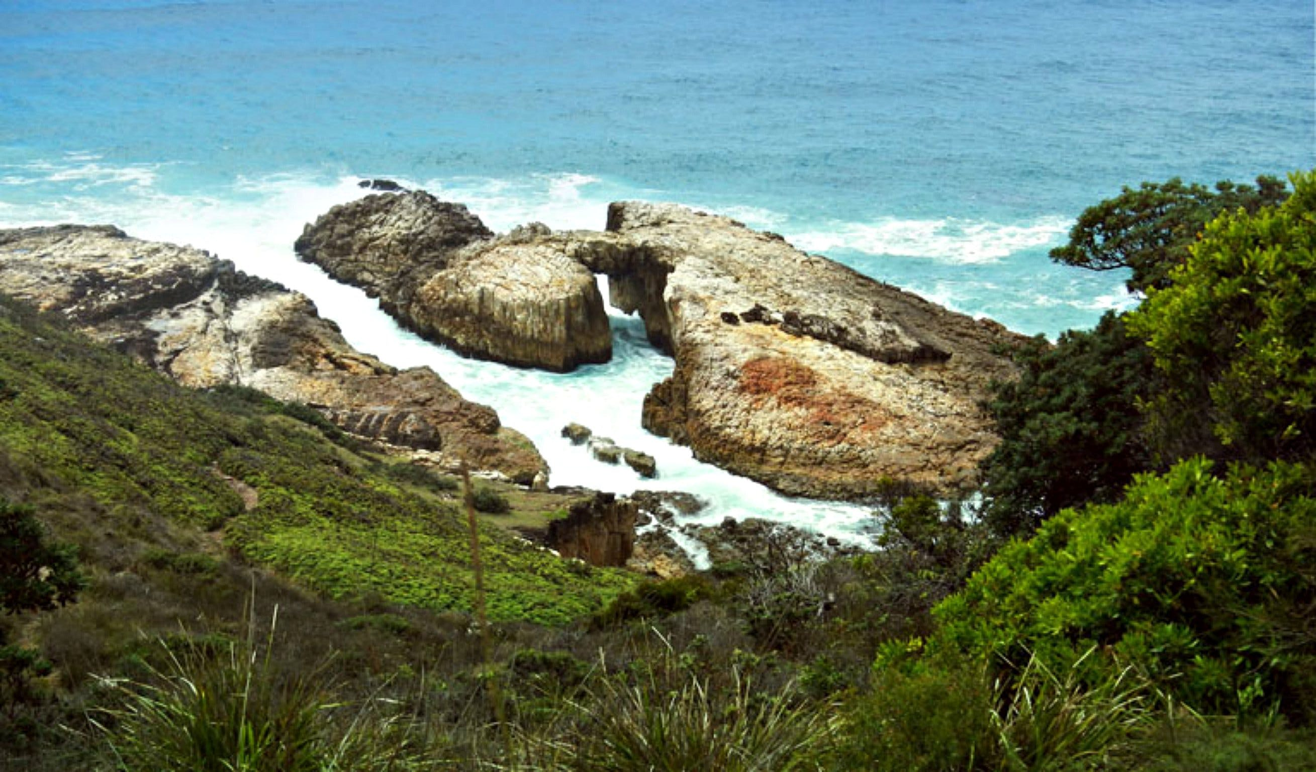 Diamond Head Loop Walk - QLD Tourism
