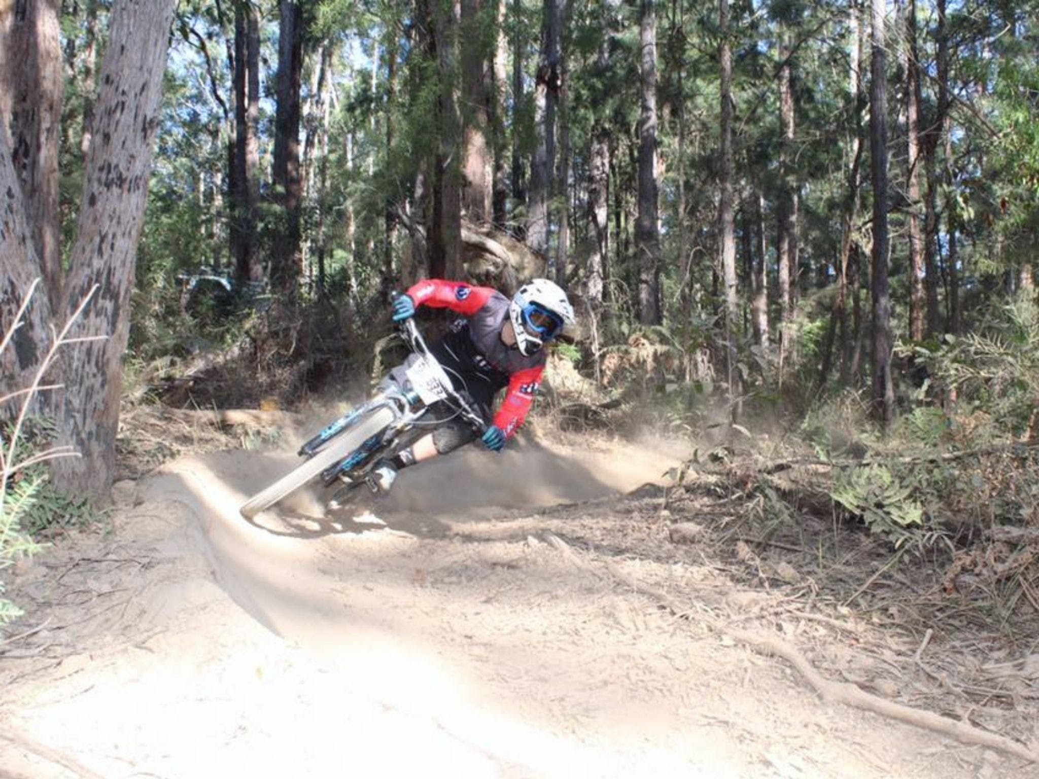 Jolly Nose Mountain Bike Park - QLD Tourism