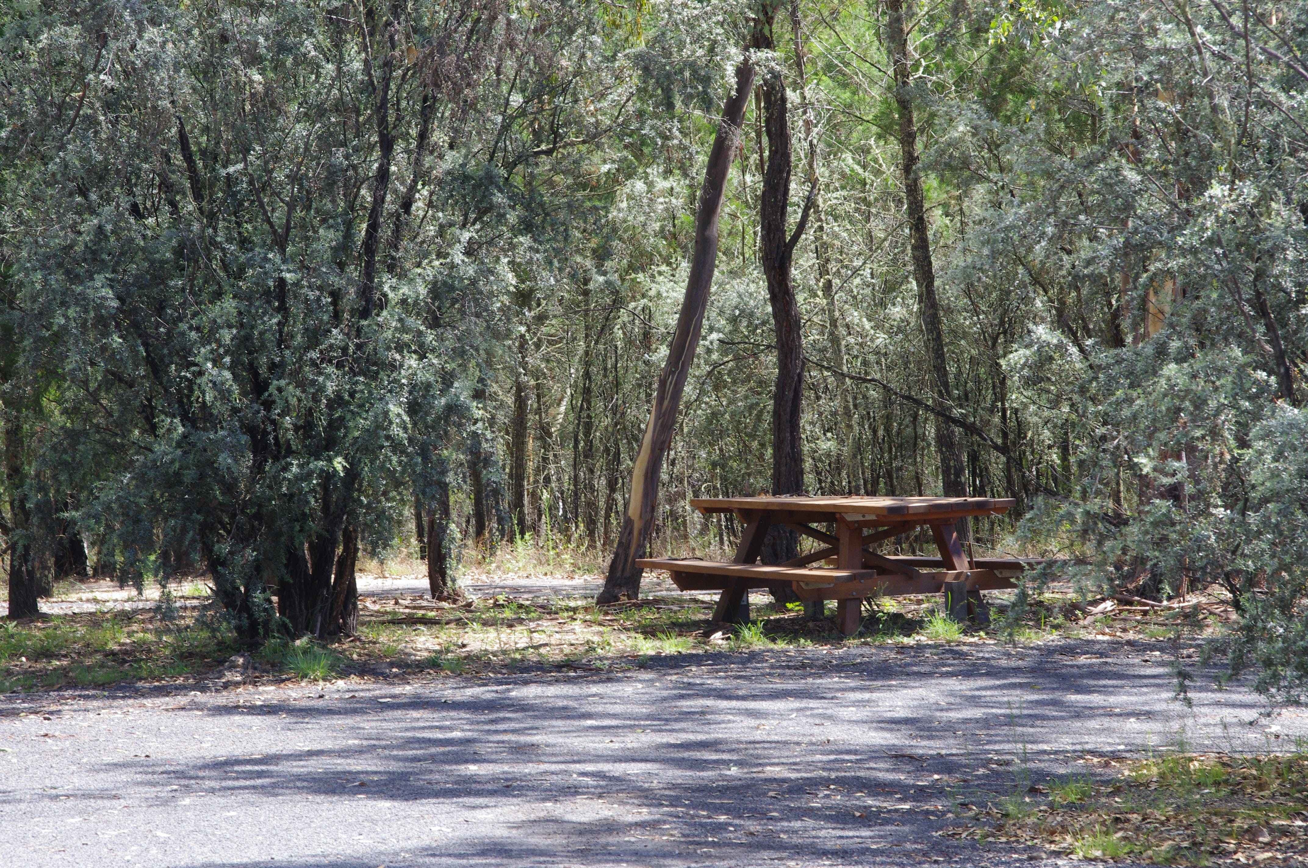 Goonoowigall State Conservation Area - QLD Tourism