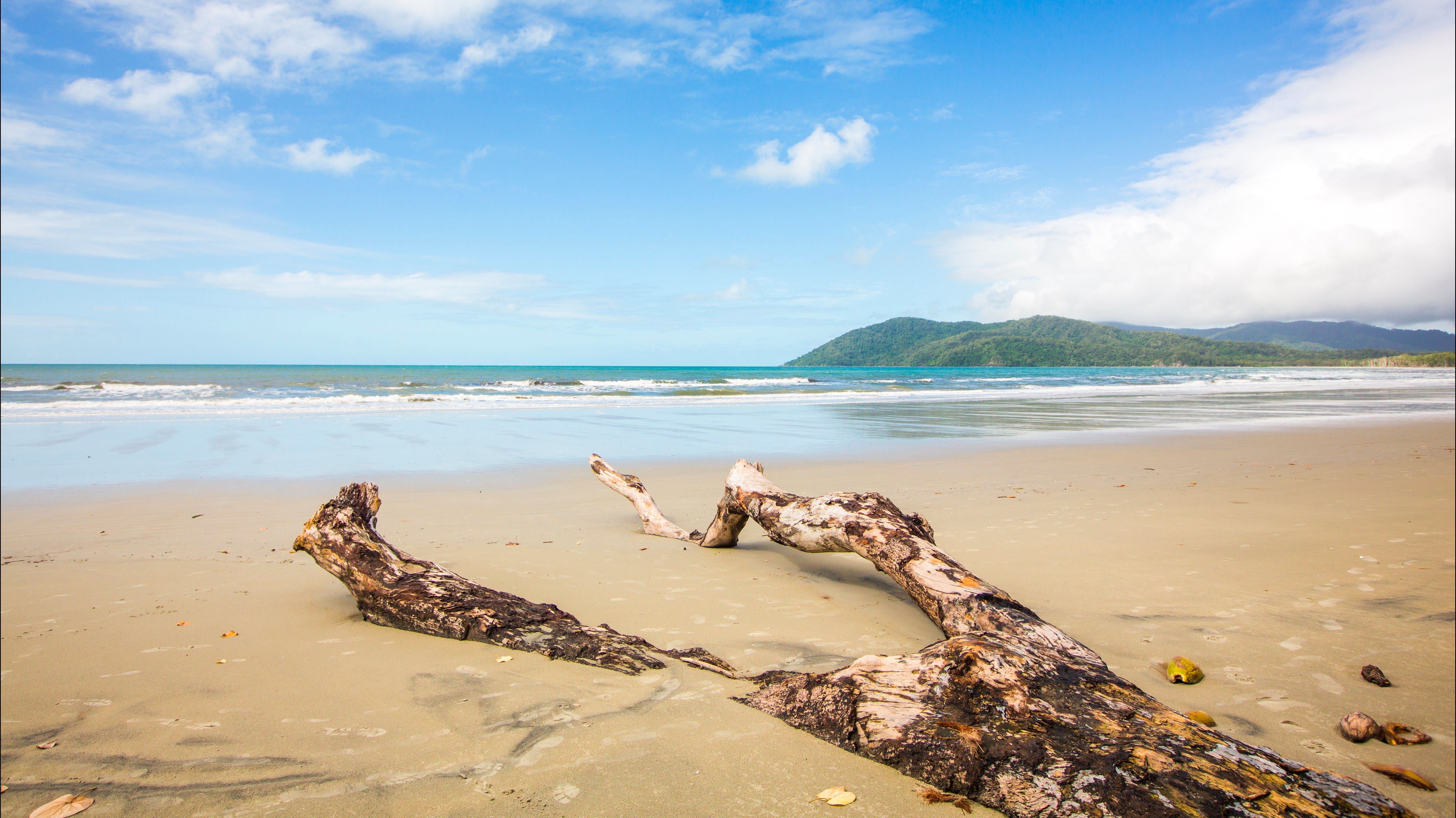 Cow Bay - QLD Tourism