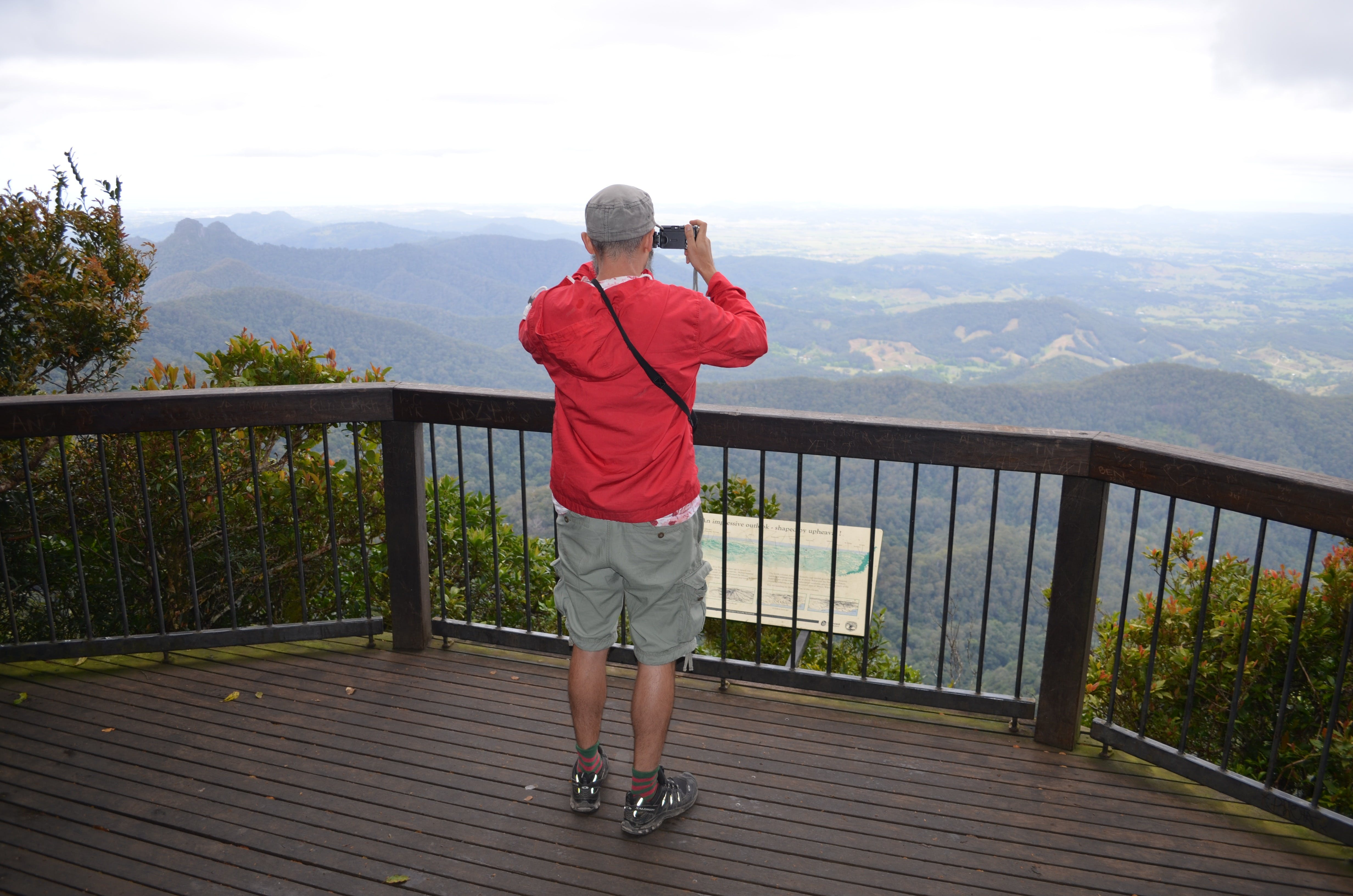 Best of All lookout track Springbrook National Park - QLD Tourism