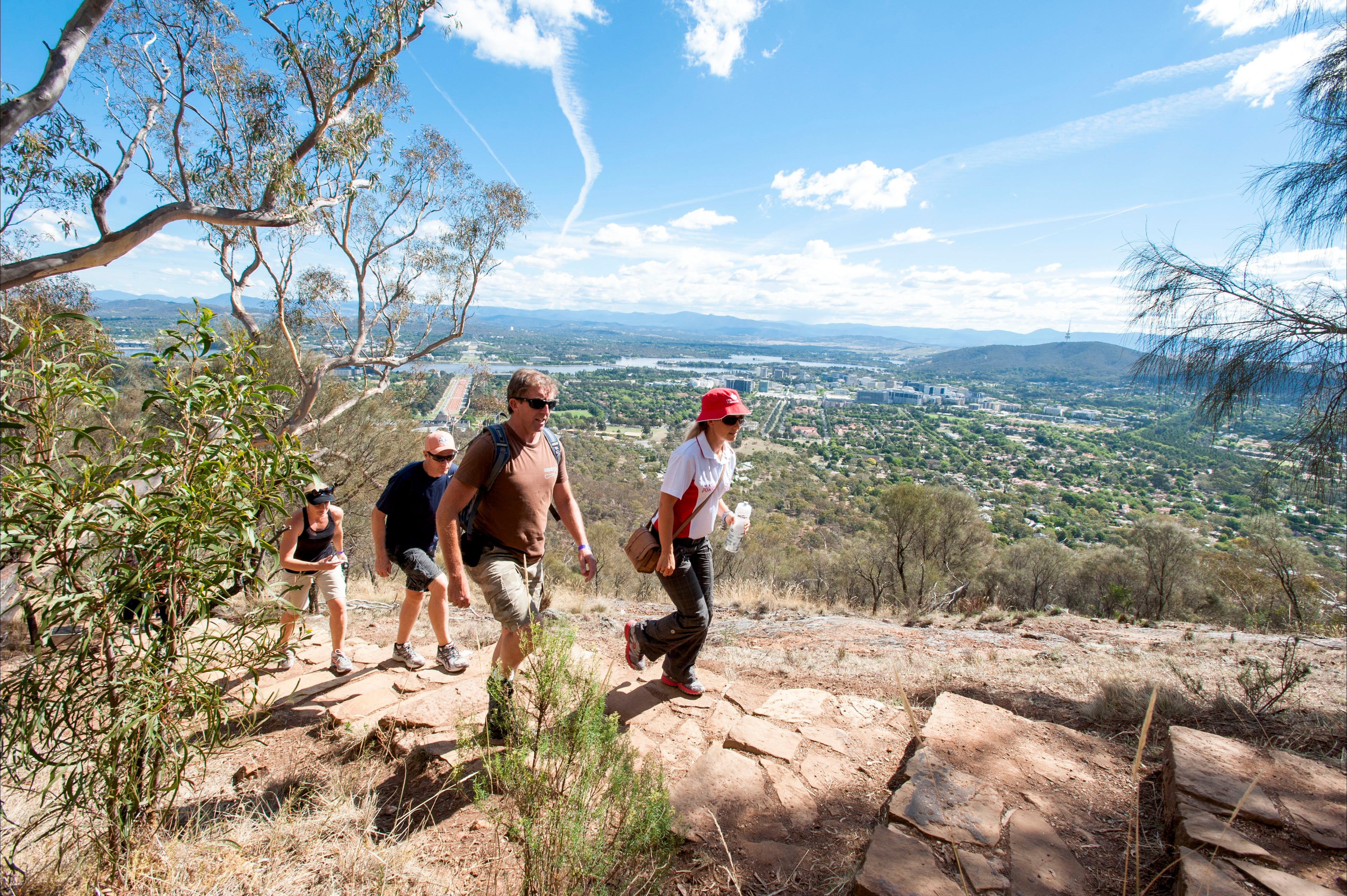 Mount Ainslie Lookout - QLD Tourism