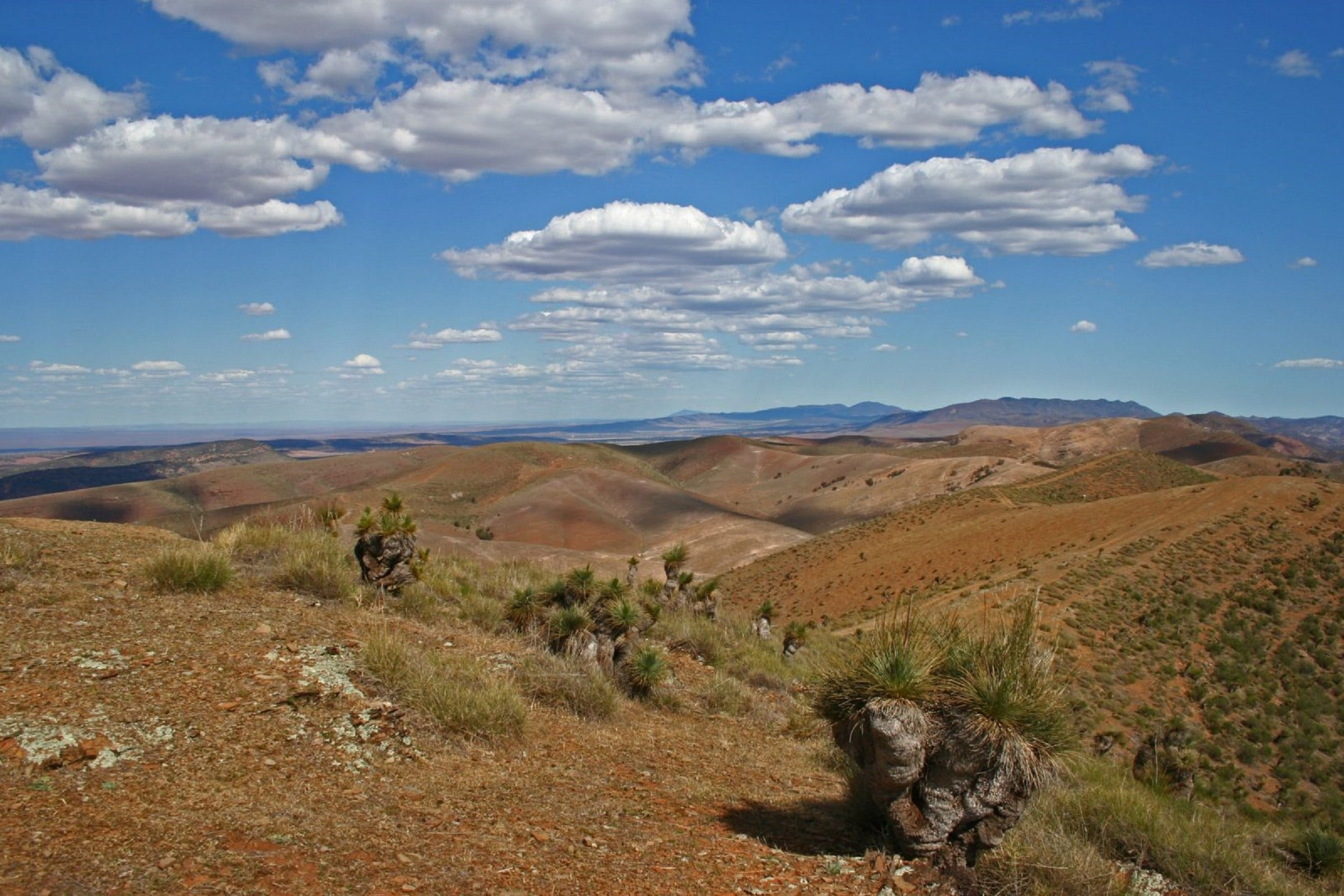 Arden Hills 4WD Track - QLD Tourism