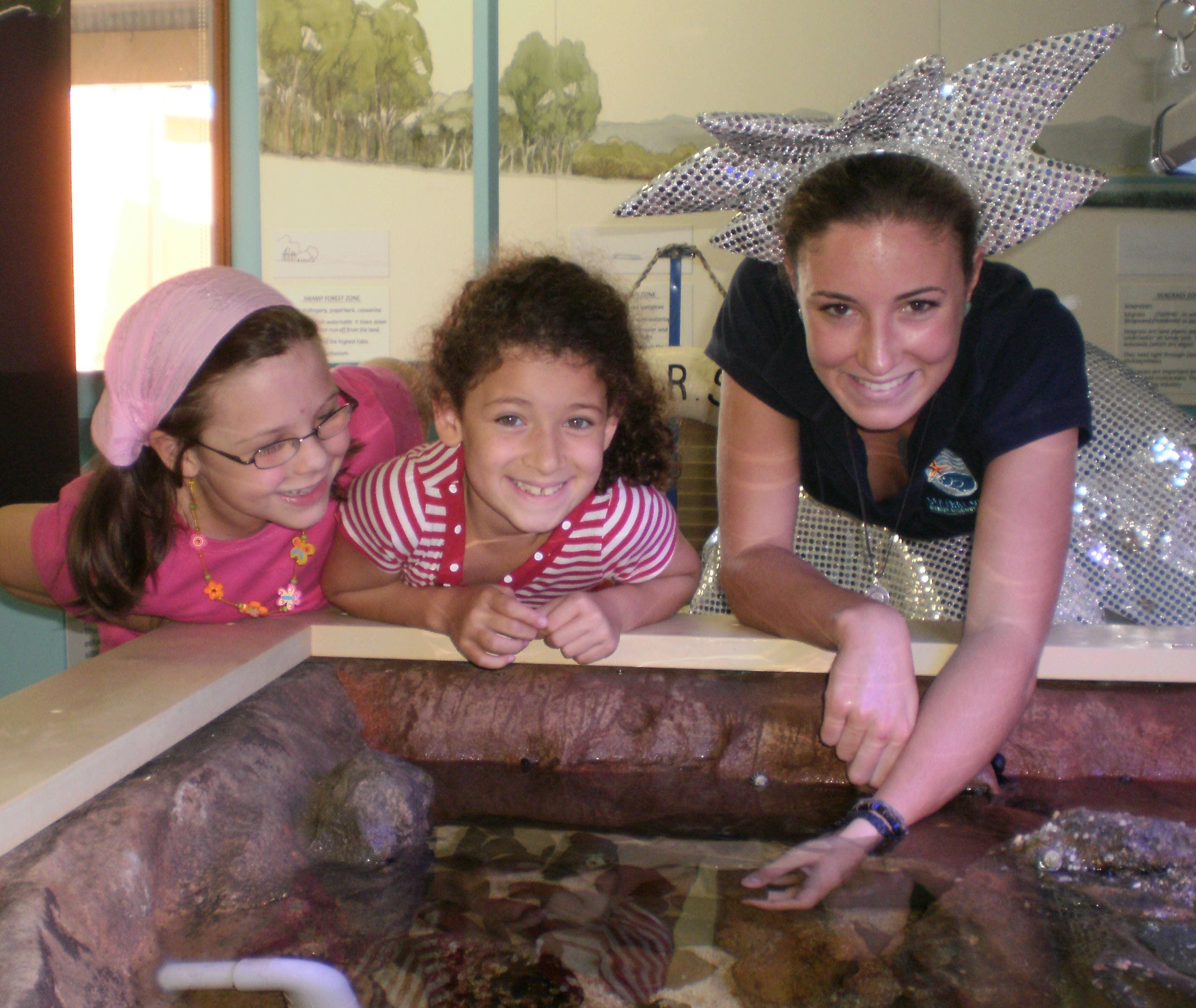 Central Coast Marine Discovery Centre - QLD Tourism