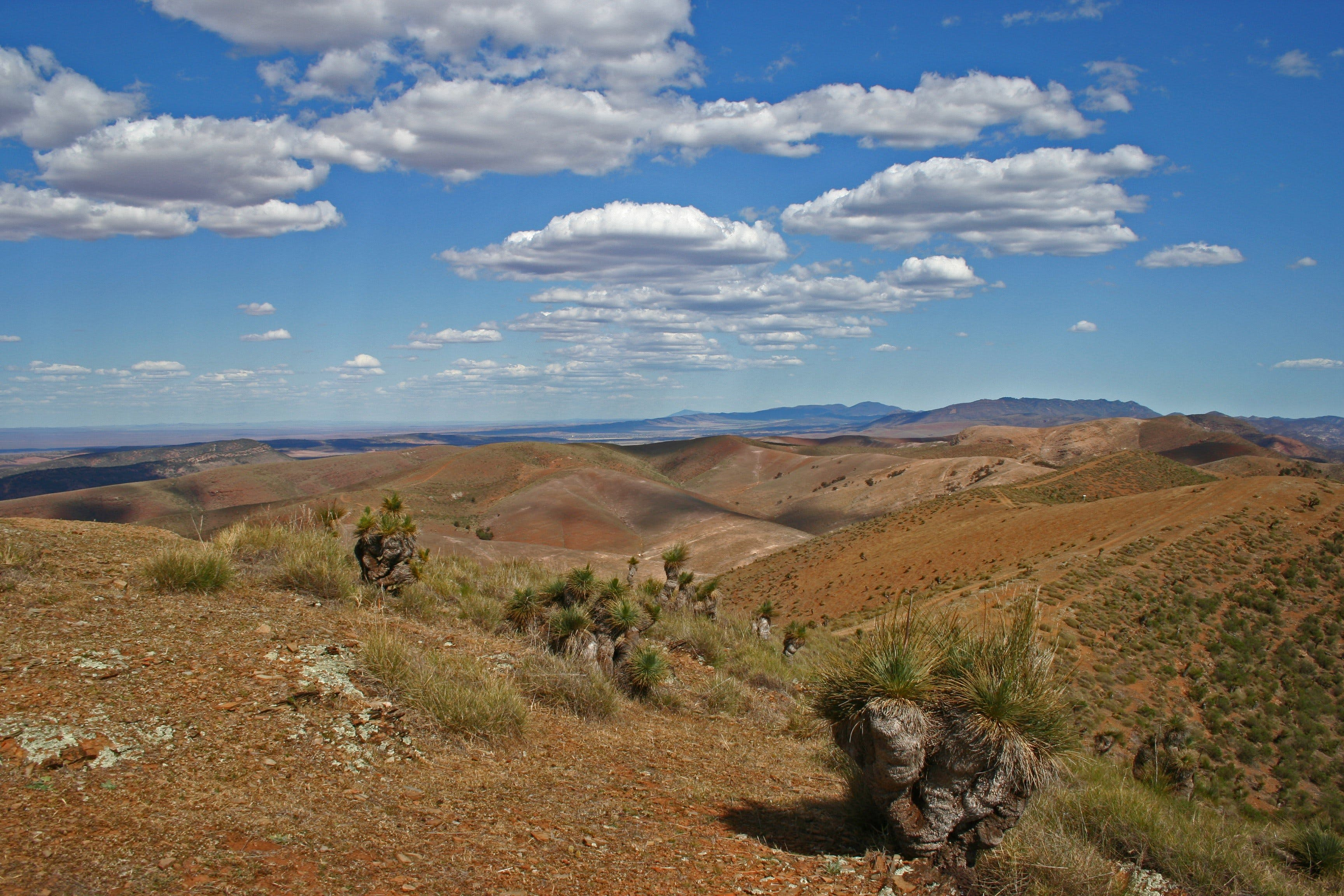 Arden Hills 4WD Track. - QLD Tourism