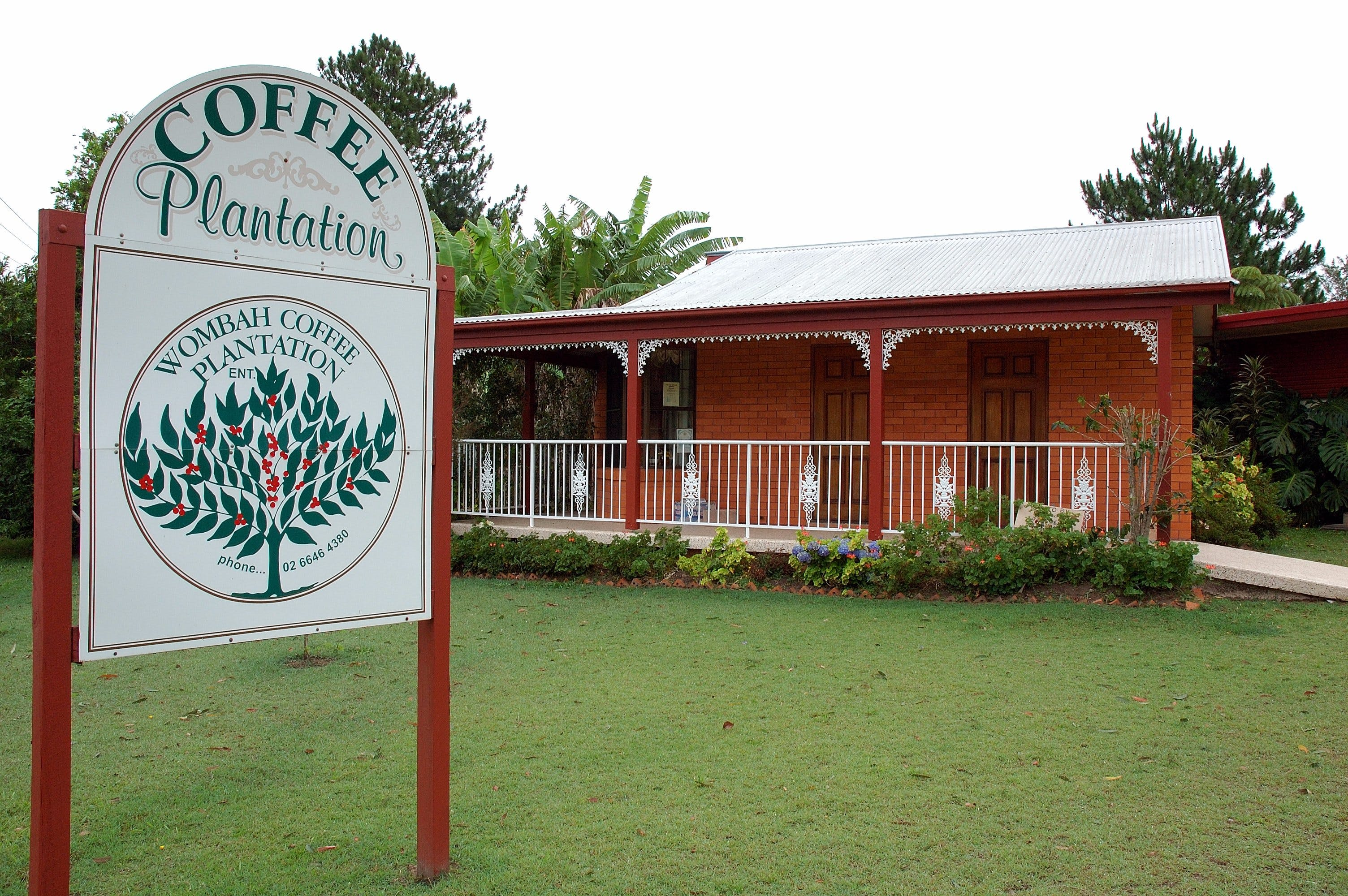 Wombah Coffee Plantation - QLD Tourism