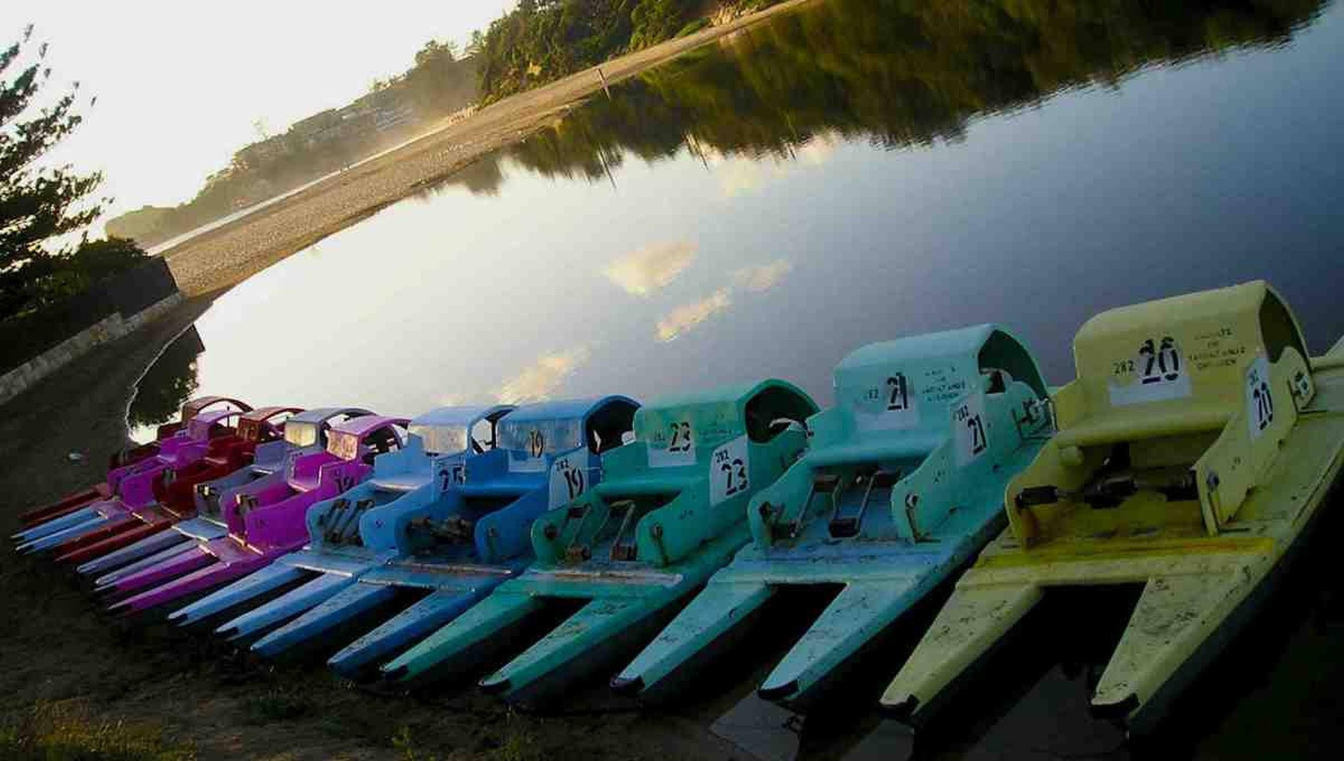 Terrigal Paddle Boats and Stand Up Paddle Boards - QLD Tourism