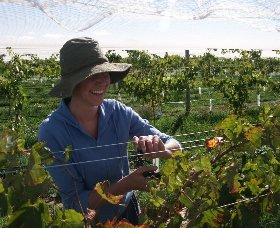 Kingsdale Wines - QLD Tourism