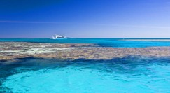 Reef Jet Cruises - QLD Tourism