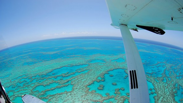 Air Whitsunday Day Tours - QLD Tourism