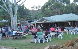 Bush Shack Brewery - QLD Tourism