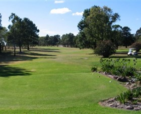 Branxton Golf Club - QLD Tourism