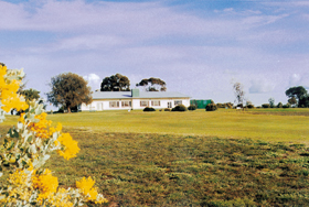 Lucindale Country Club - QLD Tourism