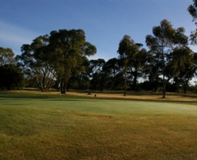 Winchelsea Golf Club - QLD Tourism