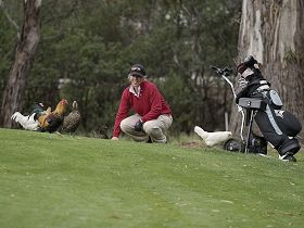 Tasmania Golf Club - The - QLD Tourism