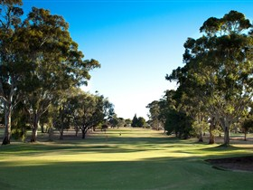 Loxton Golf Club - QLD Tourism