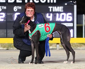 Bulli Greyhound Racing Club - QLD Tourism