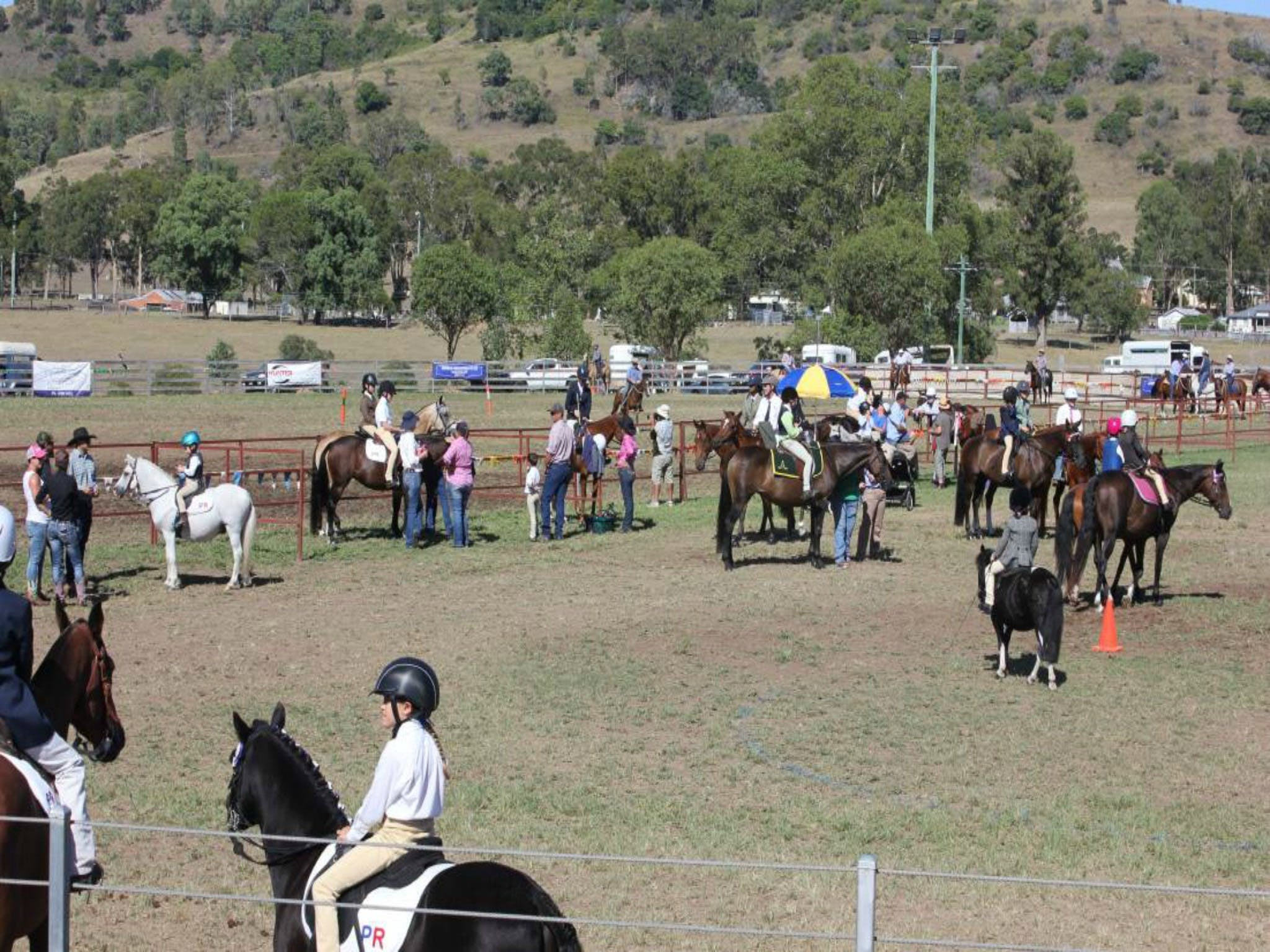 Gresford Agricultural Show - QLD Tourism