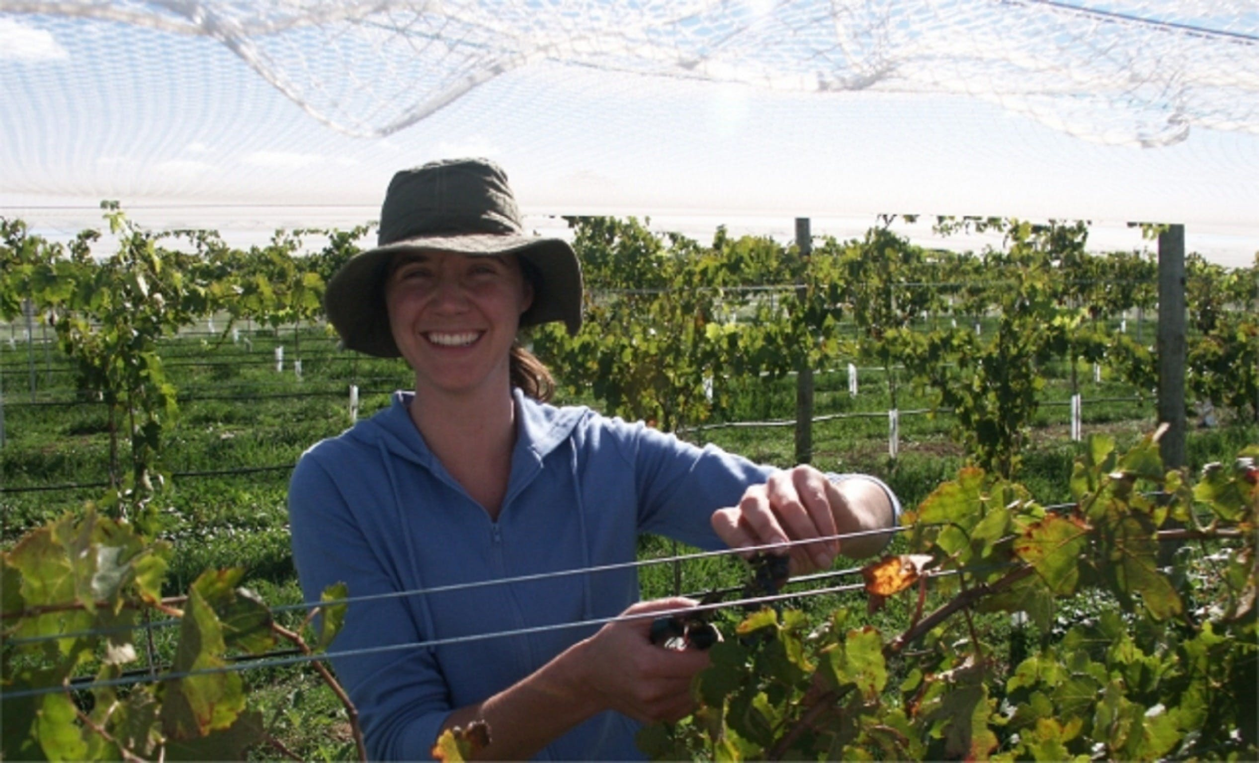 Kingsdale Wines - Cellar Door Wine Tastings - QLD Tourism