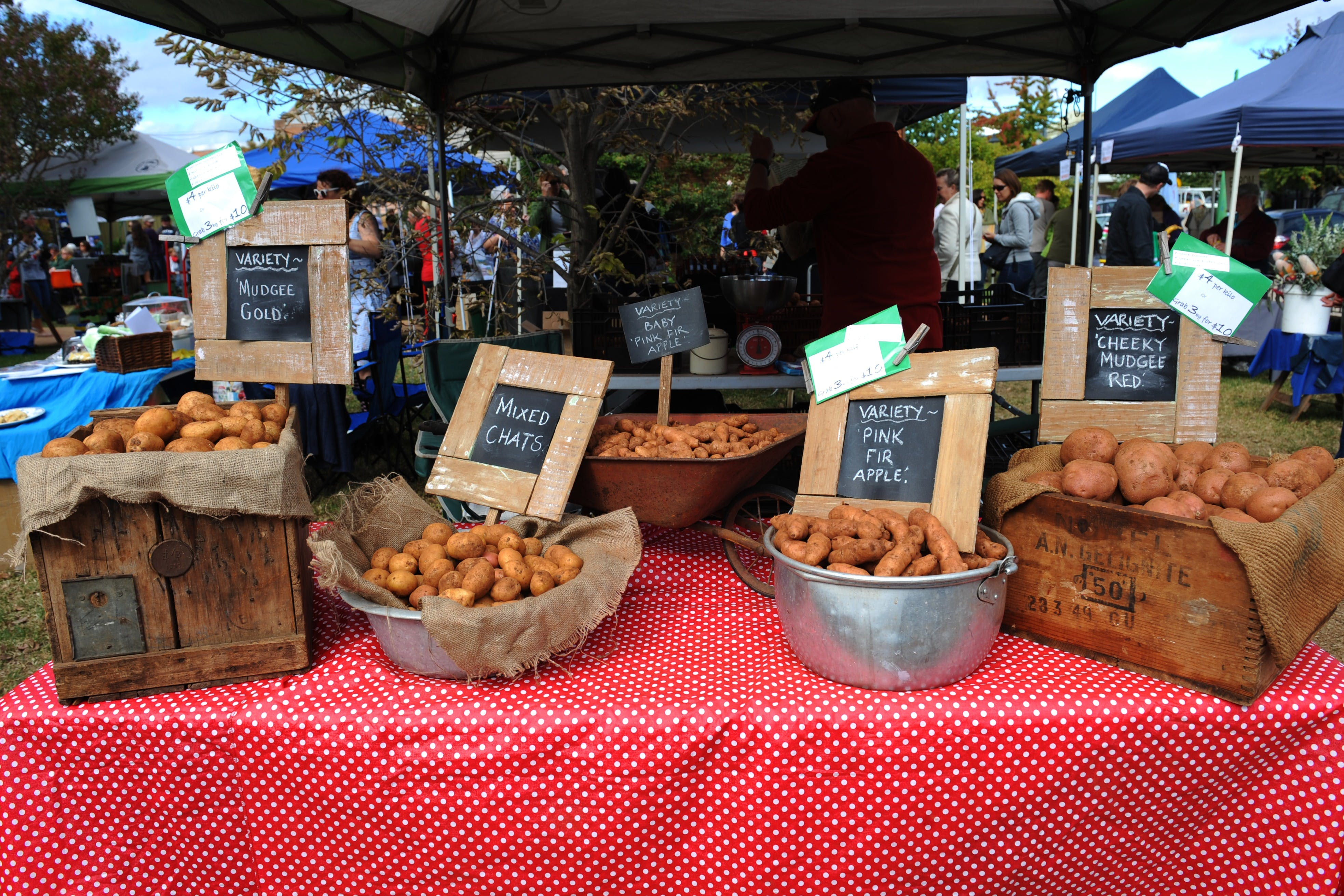 Lawson Park Markets - QLD Tourism