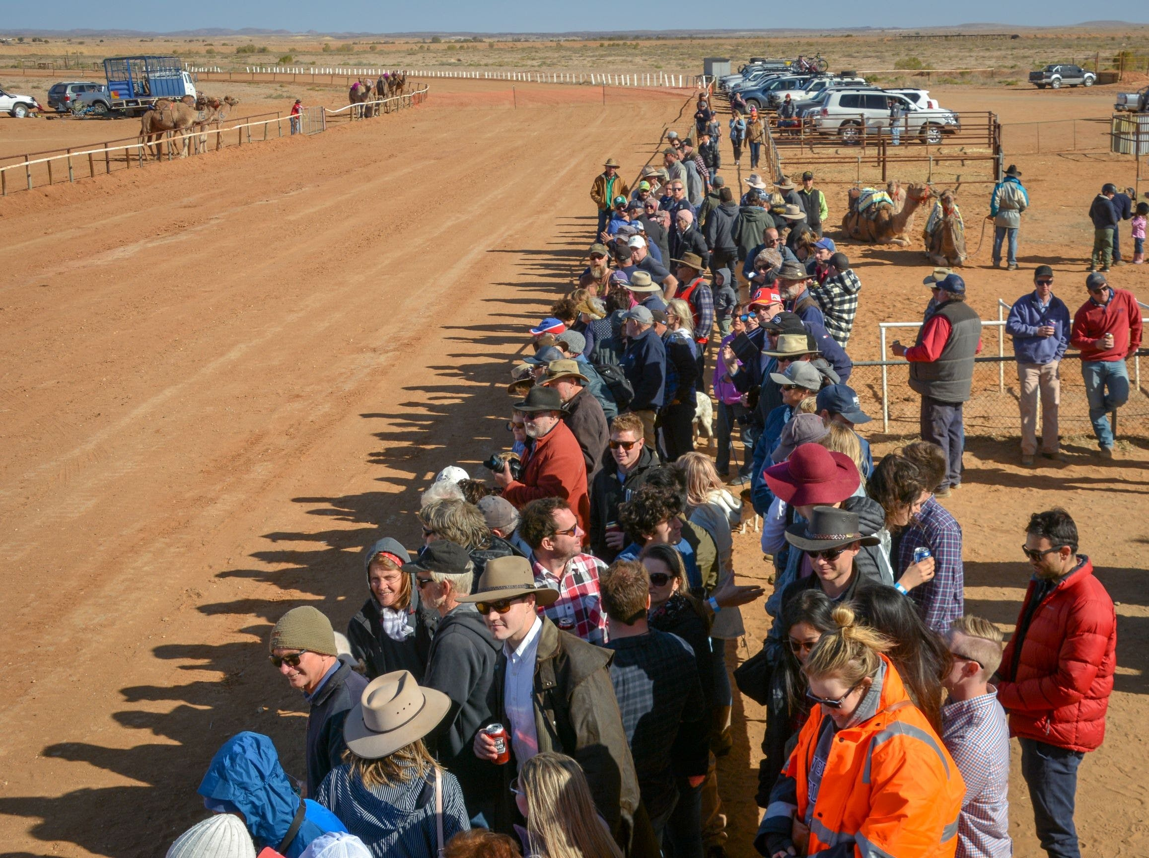 28th Marree Australasian CAMEL CUP 3 July 2021 - QLD Tourism