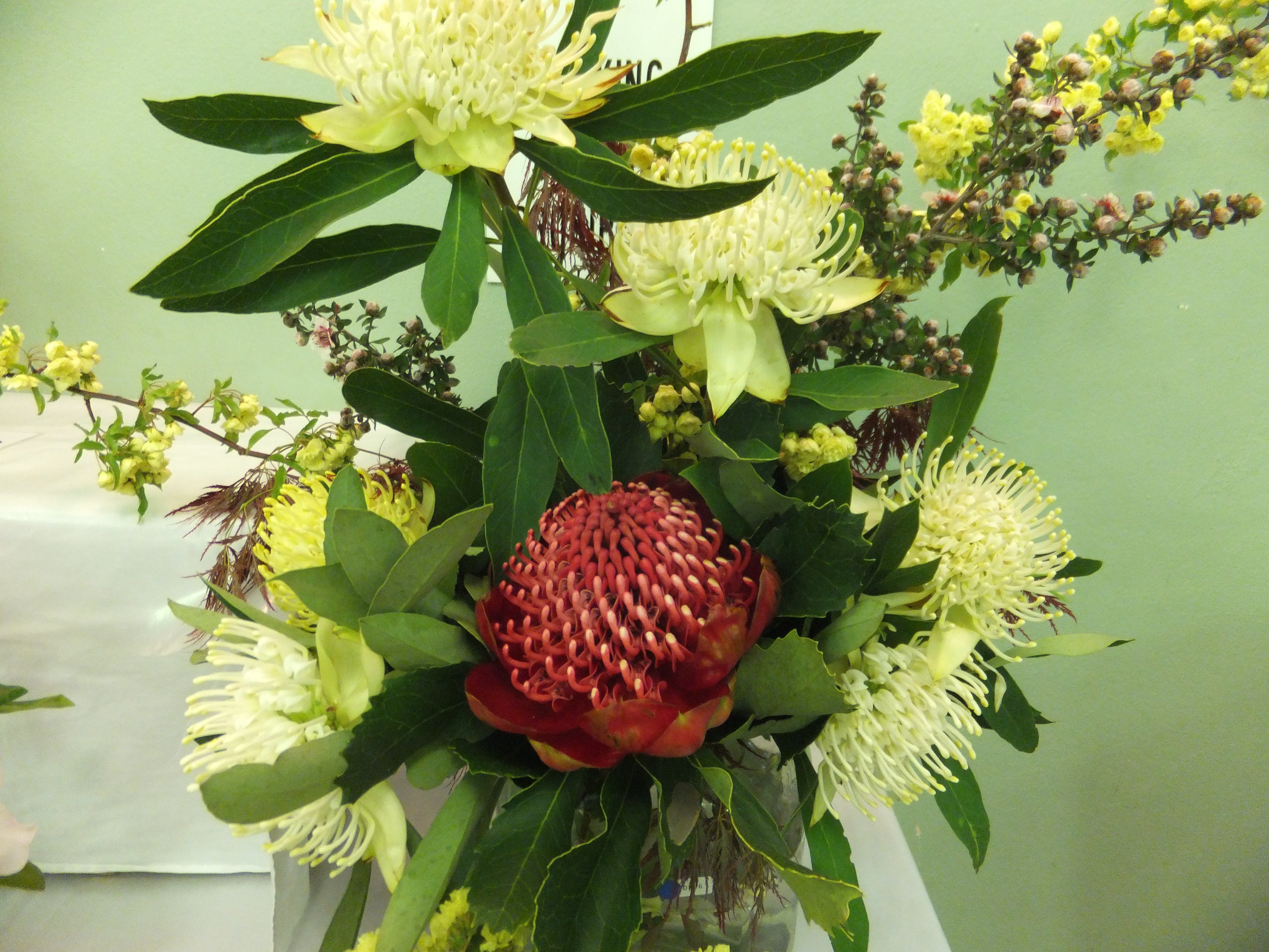 Blackheath Flower and Craft Show - QLD Tourism