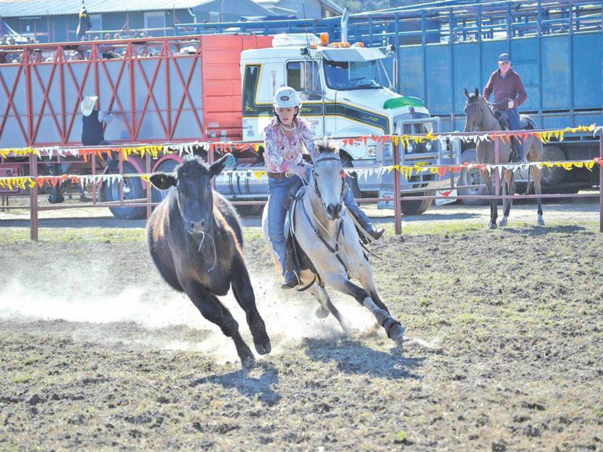 Gresford  Campdraft and Rodeo - QLD Tourism