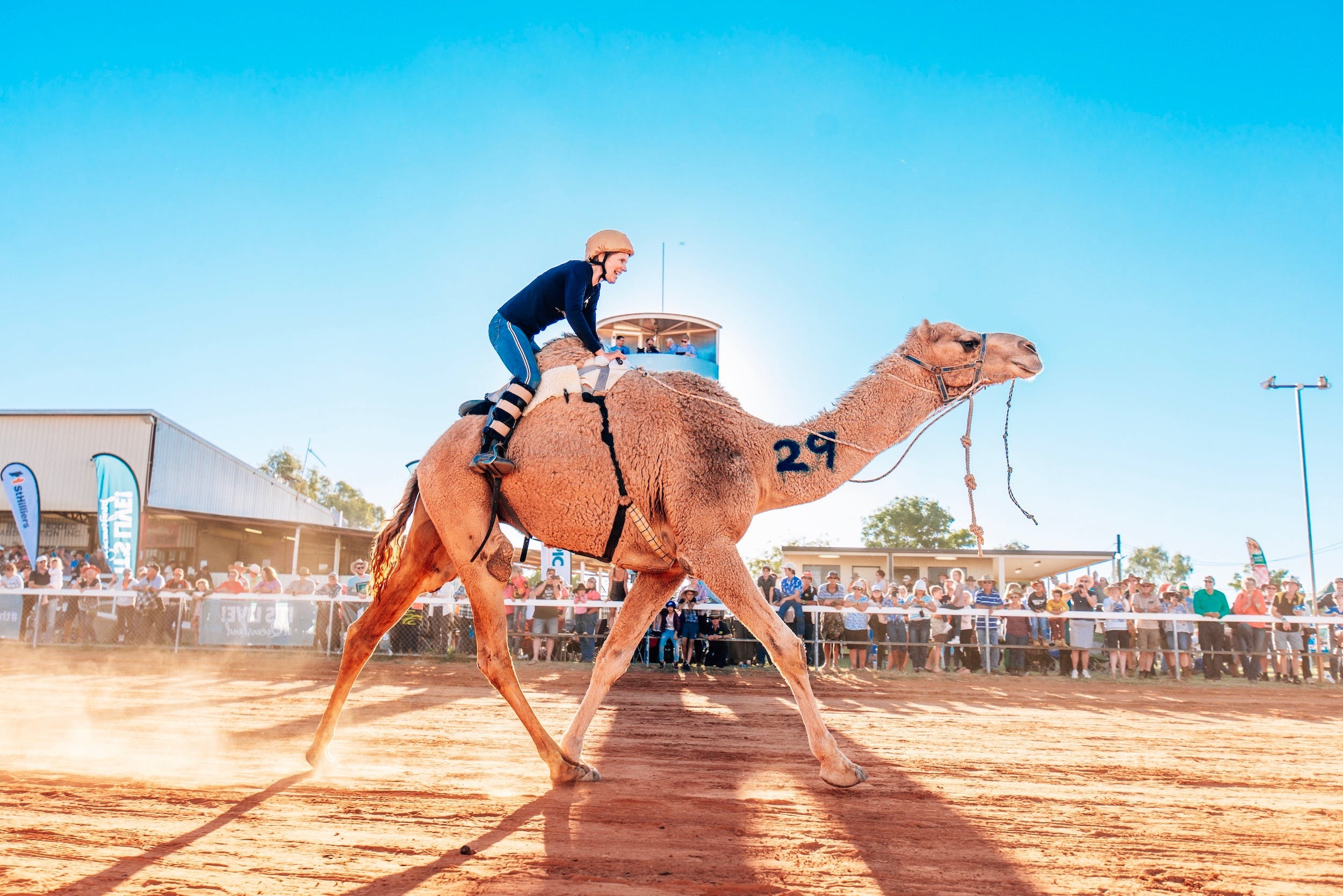 Boulia Camel Races - QLD Tourism