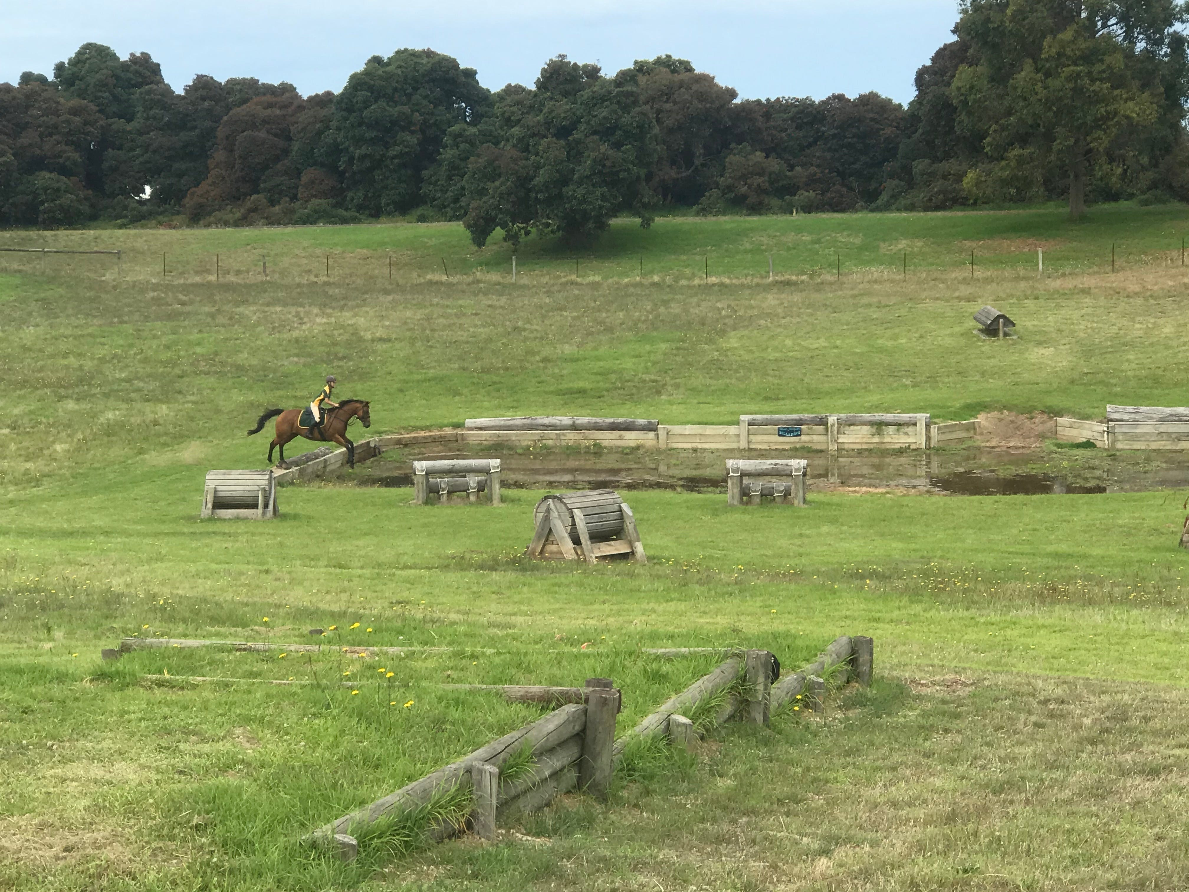 Mount Gambier and District Pony Club Horse Trials 2020 - QLD Tourism
