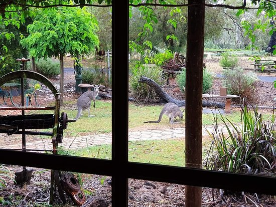 The Wander Inn - QLD Tourism