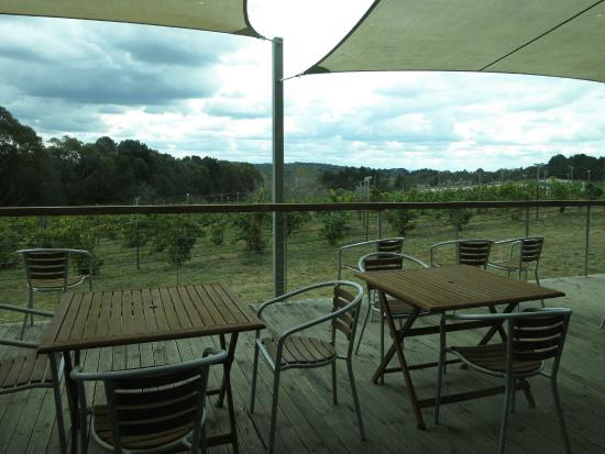 Lark Hill Winery Restaurant - QLD Tourism