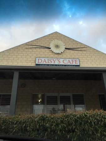 Daisy's Cafe - QLD Tourism