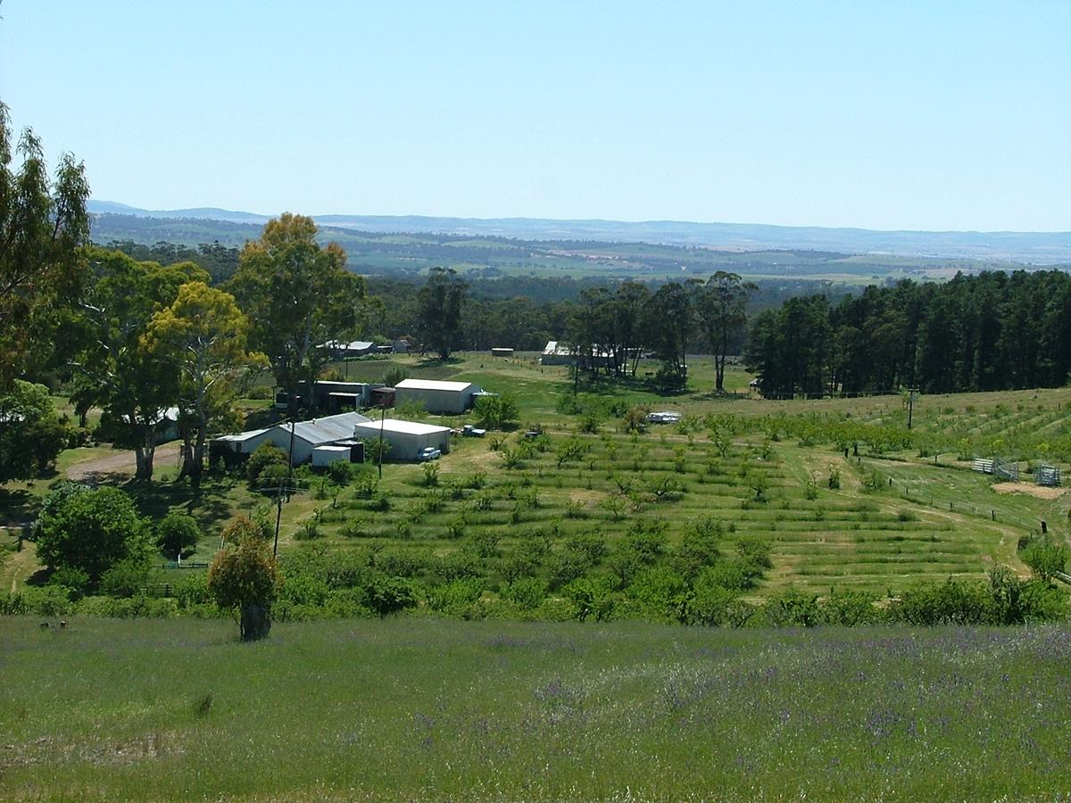 Taralee Orchards - QLD Tourism