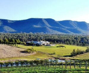 Grapevines Boutique Accommodation - QLD Tourism