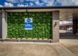 Best Western Endeavour Motel - QLD Tourism