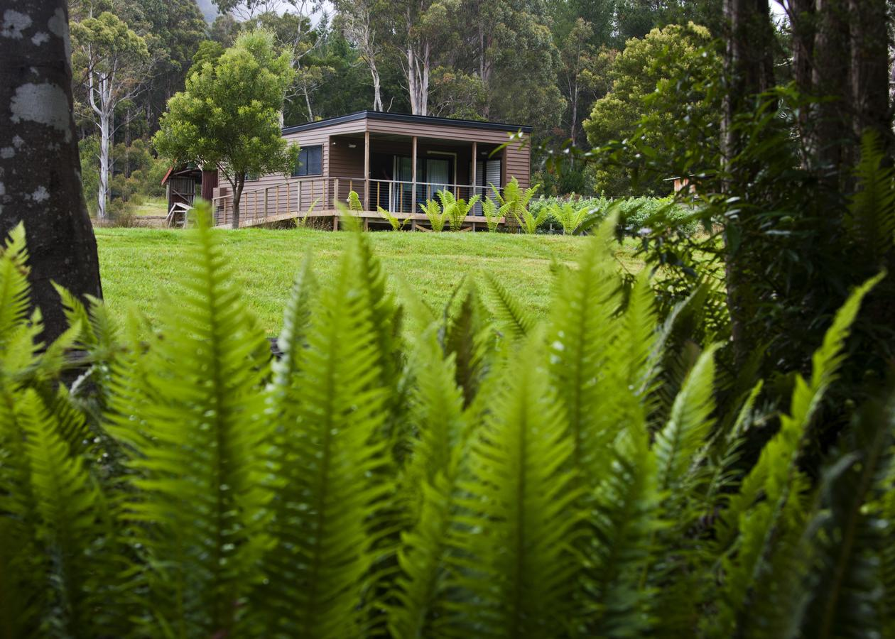 Tyenna River Cottage - QLD Tourism