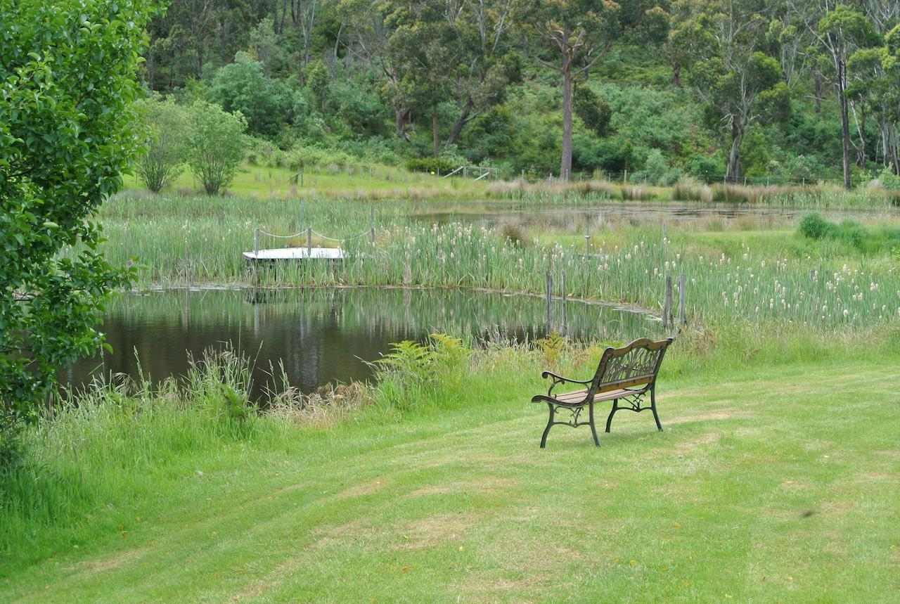 Hamlet Downs Country Accommodation - QLD Tourism